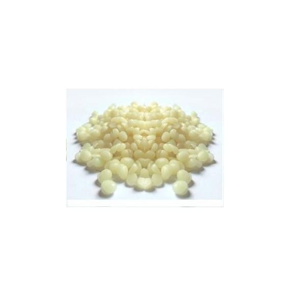 Ceara granulata - Boad Wax -Milk