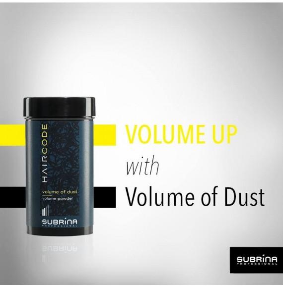 Praf pentru volum - Subrina Haircode Volume Of Dust - 10 gr