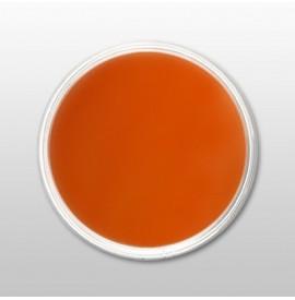 Moyra - Praf de portelan color - Mango - Nr. 14 - 3,5 gr