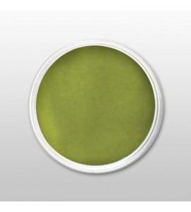 Moyra - Praf de portelan color - Grass Green - Nr. 39 - 3,5 gr
